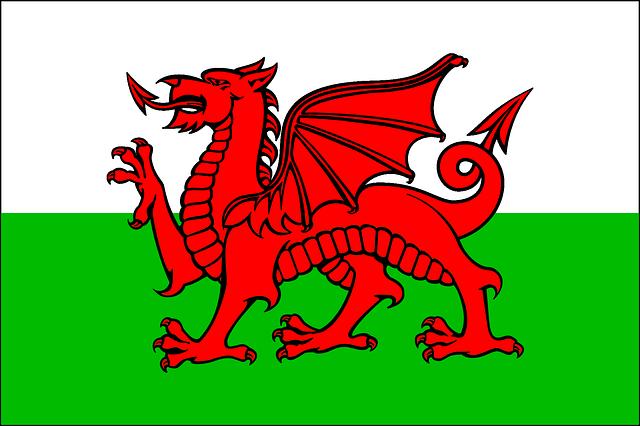 wales flagga - Bra att veta